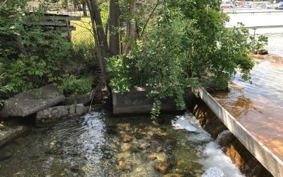 Dam Strong for Clark Lake – the Story Continues