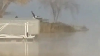 Eagle at East End Bay