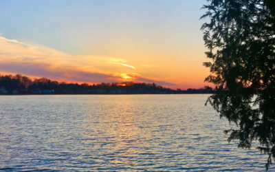 Clark Lake's Natural Progression