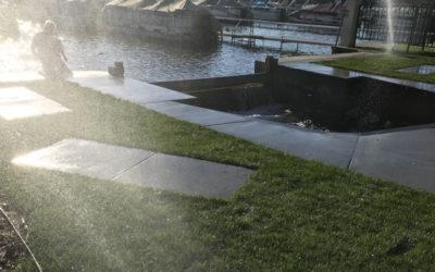 Dam Strong Update #7