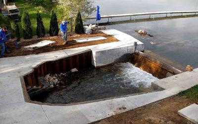 Greening of the Dam – Update #6