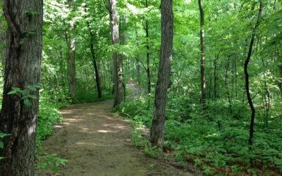Spirit Trail and Hunting Season
