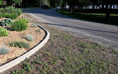 Garden Angels' New Curbs